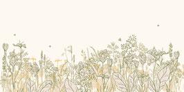 BOARDER dans les champs jaune/vert