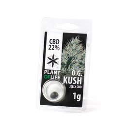 "Plant of Life - ""OG Kush"""