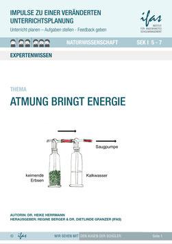 Impulse zu einer veränderten Unterrichtsplanung: Atmung bringt Energie