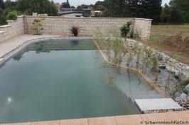 Schwimmteich Basis