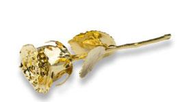 """""""Echte Rose"""" beschichtet mit reinstem Feingold, 16 cm"""
