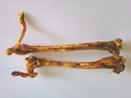 Rehknochen XL ca 25 cm mit Sehne