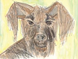 Grußkarte Hund