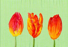 Grußkarte Tulpen