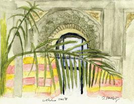 Grußkarte Palmenhaus, Wilhelma