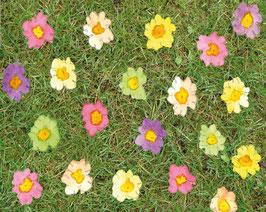 Grußkarte Blütenwiese