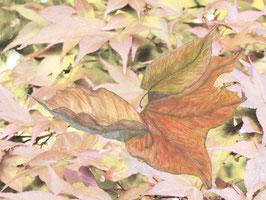 Grußkarte Blätter