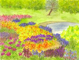 Grußkarte Blumenwiese Killesbergpark