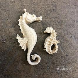WoodUbend Seepferdchen 5 x 1,5 cm #2170