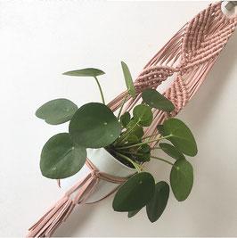 Planthanger Lola