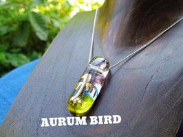AURUM-DROPS (旅鳥 Migratory birds)