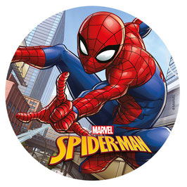 Disque Azyme 20 cm Spiderman