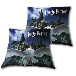 1 Coussin Harry Potter Hedwige