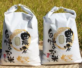 無農薬ひのひかり20kg玄米