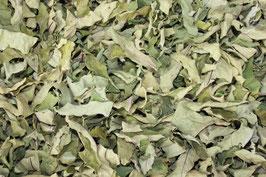 柿の葉 乾燥品200g
