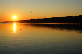 «Morgenstund», Neuenburgersee bei Sonnenaufgang, Yverdon-les-Bains, CH