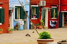 «Lebens-Stiel-Bild», auf der Insel Murano, Venedig, IT