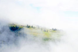Berghütte im Nebel, Rigi, Schwyz, CH