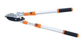 Teleskop-Astschere