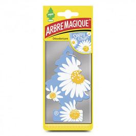 ARBRE MAGIQUE MARGARITAS