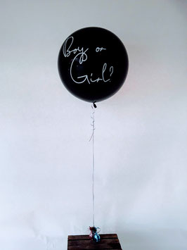 Gender Ballon fliegend