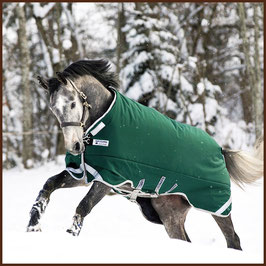 Winterdecke Horseware Mod. Rambo Turnout Heavy mit Leg Arches 400g