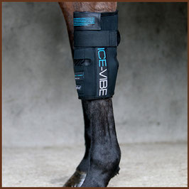 """Ice-Vibe Knee Wraps"" HORSEWARE"