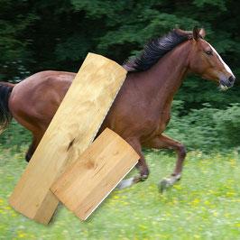 Pferdebürste Ross-Sagi