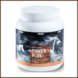 Frey Horse Dynamic POWER PLUS - + Magnesium + Lysin