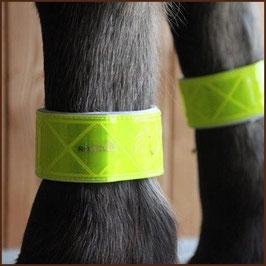 Pferde-Leuchtgamaschen von ROWEL