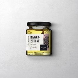 Ingwer-Zitrone Honig