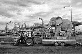 GM - Circo Orfei 3, Assago (MI)