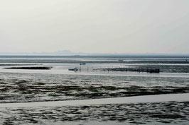 LC27 - Terra Acqua e Silenzio