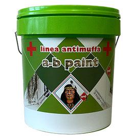 A-b paint