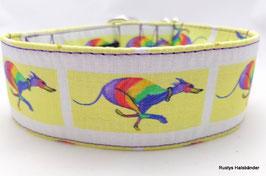 Halsband Windhund / 20. Regenbogen Windi