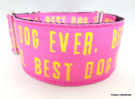 Halsband Best Dog Ever pink / 60.