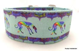 Halsband Windhund / 3. Regenbogen
