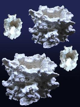Riffkeramik Set Anemonenhöhlen