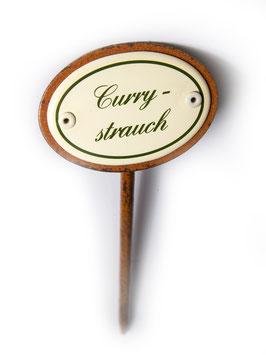 Currystrauch