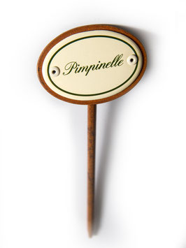 Pimpernelle