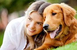 Gesundheit für Hunde informiertes Amulett für Hunde