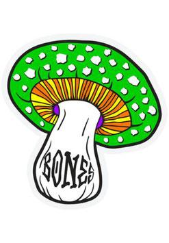 Bones Wheels Reyes Portal Sticker Grün