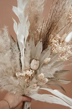 Trockenblumen groß gebleicht/natur