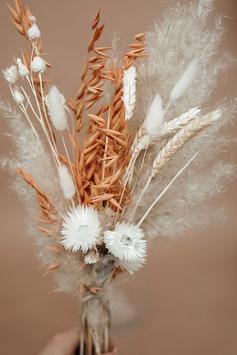 Trockenblumen mittel gebleicht/altrosa