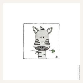 Poster 30x30 cm   Zebra