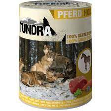 Tundra , Dog Pferd