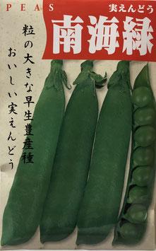 南海緑【えんどうまめ】