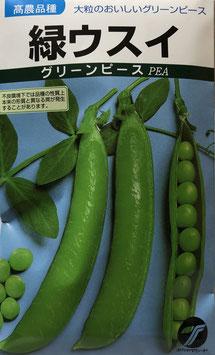 緑ウスイ【えんどうまめ】