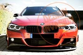 DI-Performance Carbon Nieren für F30 / F31