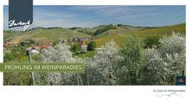 Maxi-Postkarte Frühling im Weinparadies
